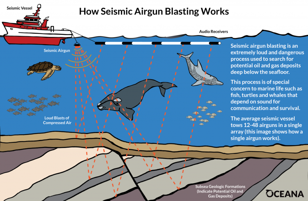 Image result for seismic testing""